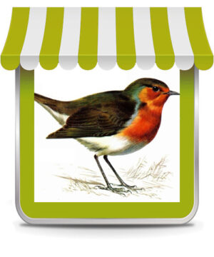 Uccelli Insettivori
